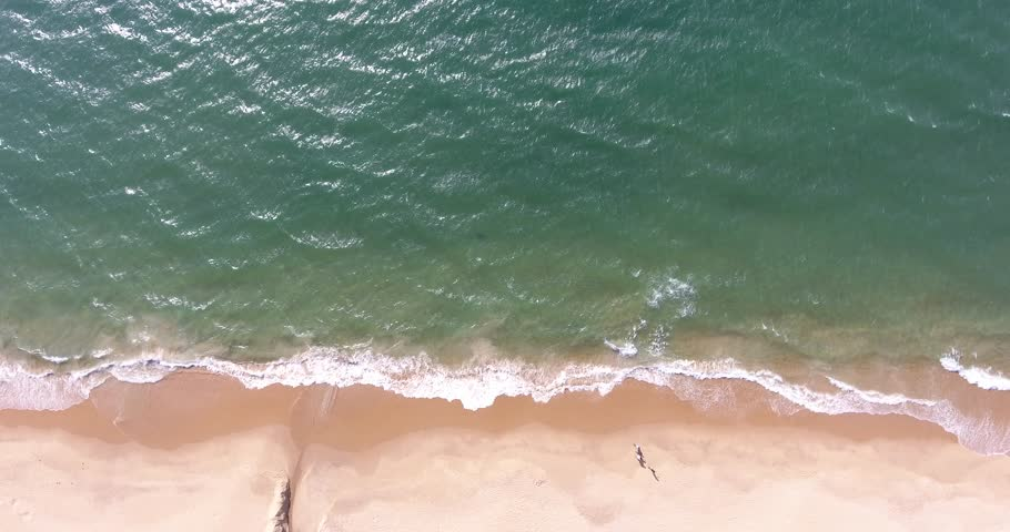 The Sea and the Beach  | Shutterstock HD Video #1016610856