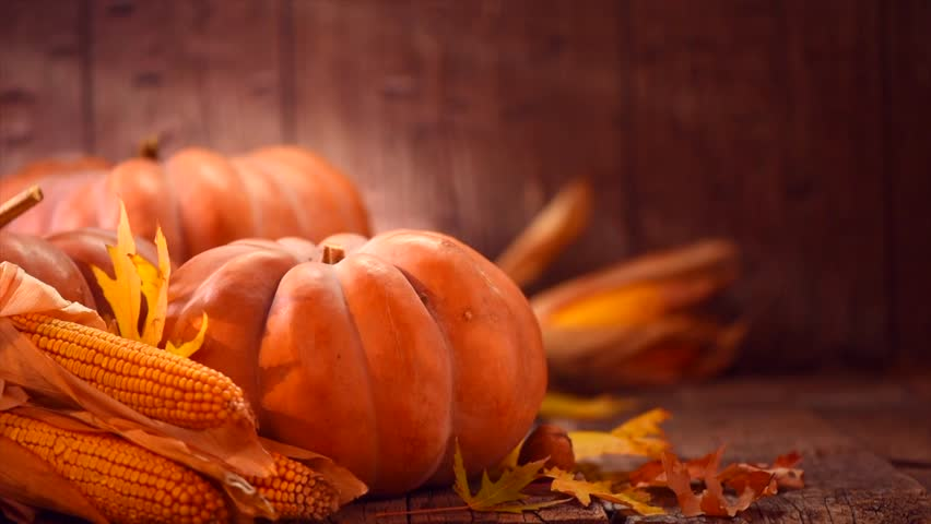 Thanksgiving Day. Pumpkin, Squash. Happy Thanksgiving Day wooden Table Background decorated with pumpkins, corn comb, candles and autumn leaves garland. Holiday Autumn festival scene, Fall, Harvest 4K | Shutterstock HD Video #1016657905