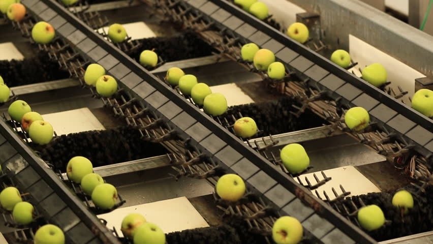 Apples on Conveyer Belt in Factory | Shutterstock HD Video #1017016168