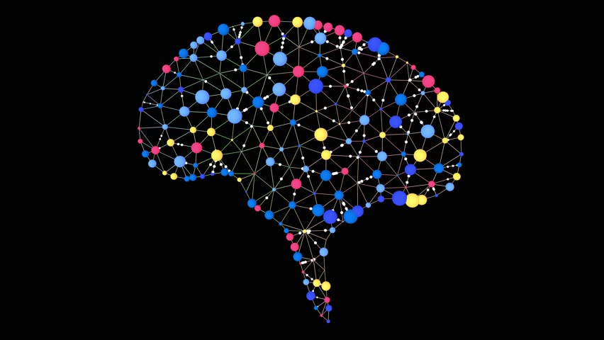 Brain activity animation | Shutterstock HD Video #1017248662