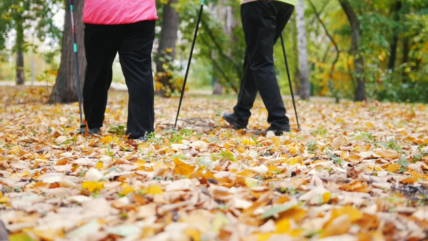 Two elderly women are doing Scandinavian walking in the park. Feet. | Shutterstock HD Video #1017261607