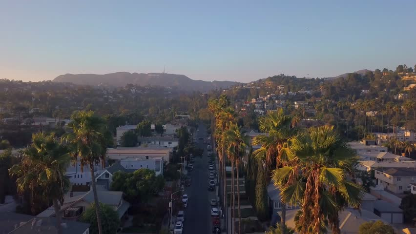 Beautiful aerial Los Angeles view with long Palms during sunset. California view near Hollywood sign district. | Shutterstock HD Video #1017333790