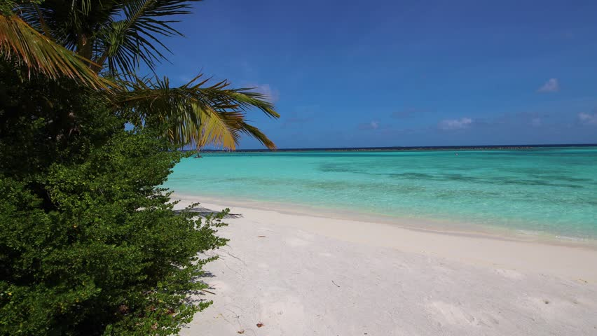 Beautiful sand beach in Paradise - Maldives. Waves, palms and blue sea.   Shutterstock HD Video #1017349957