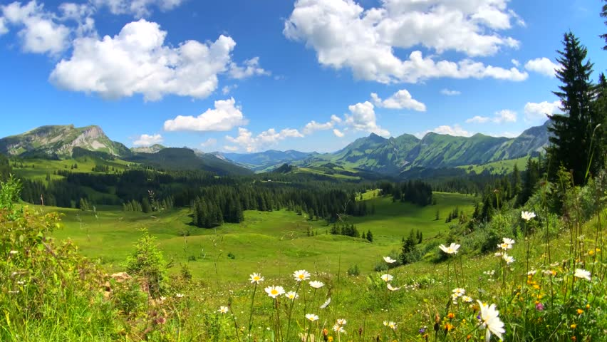 Summer time mountain nature panoramic landscape near Habkern, Switzerland | Shutterstock HD Video #1017375745