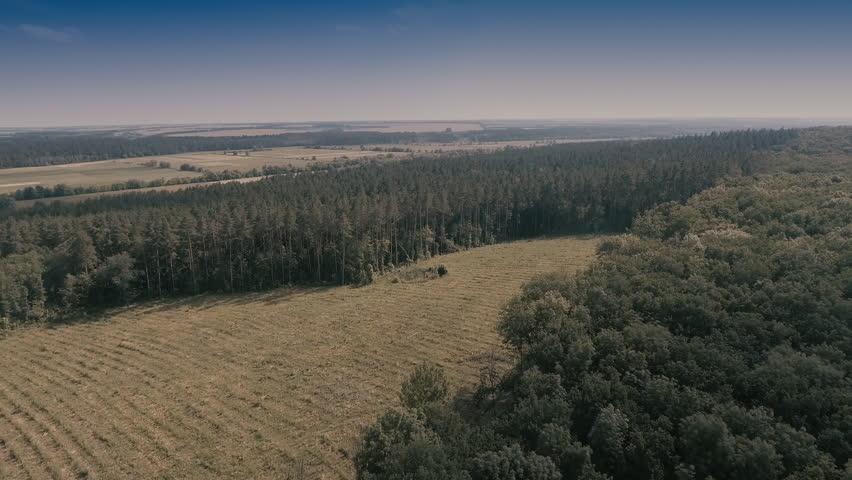 Aerial survey.Forest landscape from a bird's eye view. | Shutterstock HD Video #1017420100