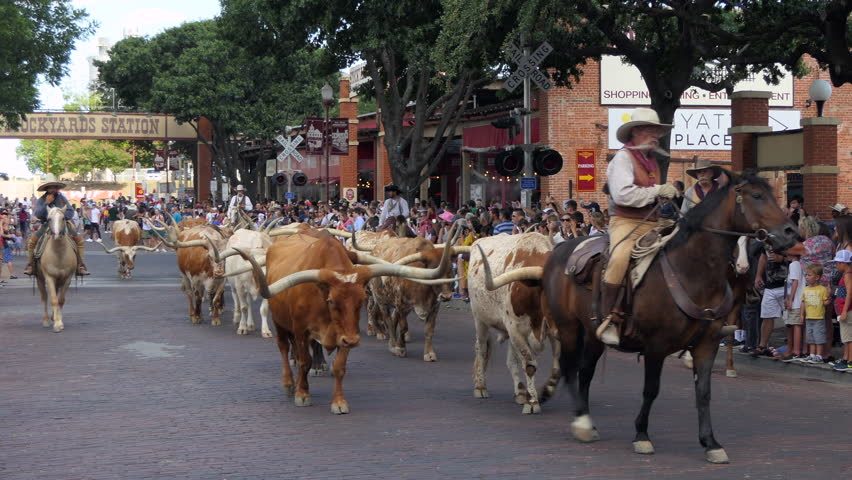 FORT WORTH, TEXAS / USA - JULY 2018: The Fort Worth Stockyards, a historic district in Fort Worth, Texas, United States of America. Cowboys riding horses and driving cattle for tourists