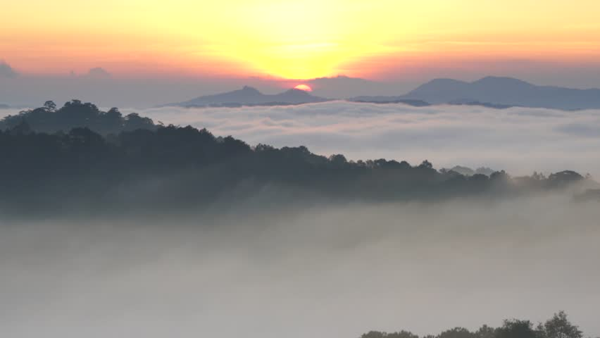 AERIAL 4K: Flight over mountain road and the greenhouse  with fog clouds sun rise on mountain in fog in area of Dalat, Vietnam #1017702313