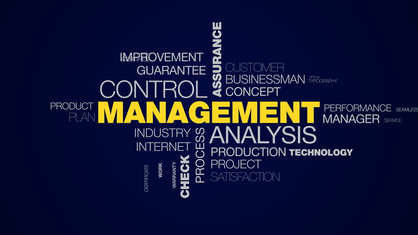 management analysis control assurance business organization strategy certification success check system animated word cloud background in uhd 4k 3840 2160.