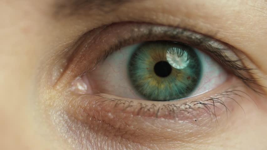 Iris shrinks as green eye opens | Shutterstock HD Video #1017752611