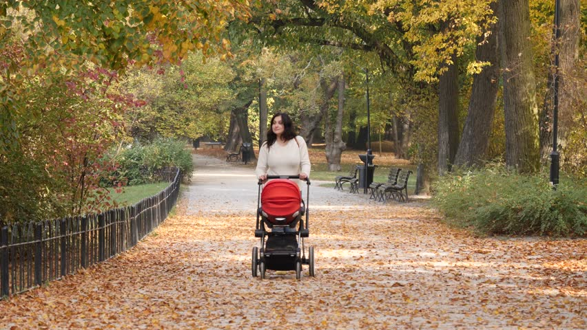 Young mother woman with baby in stroller walking beautiful autumn yellow park | Shutterstock HD Video #1017784375