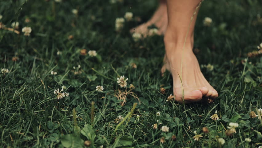 Woman's Feet Walking on the Green Summer Grass with Field Flowers. Close-up Shot. Summer Time #1017906826