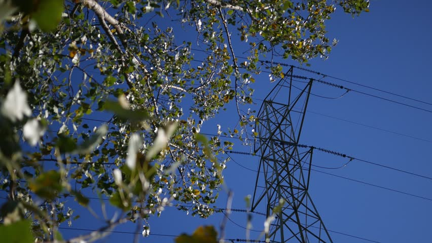 Looking through the trees at the electric power tower grid Royalty-Free Stock Footage #1017954598