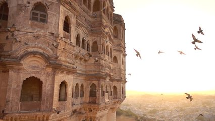 Beautiful slow motion video of some pigeons flying at sunset on the Udaipur City Palace, Rajasthan, India.