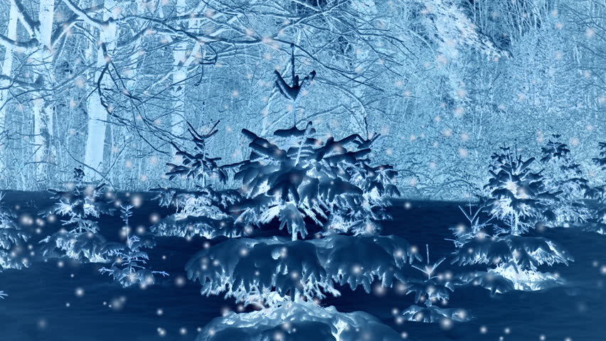 Forest trees covered snow at night in winter. Fantastic Fairytale Magical Landscape. Christmas Winter New Year Scenery. Snowfall falling snowflakes blizzard snowstorm. Seamless loop backdrop | Shutterstock HD Video #1018423672