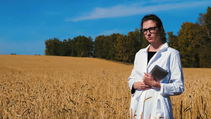 Woman agronomist. Agronomist talks about his farm. Farmer. Wheat field | Shutterstock HD Video #1018528582