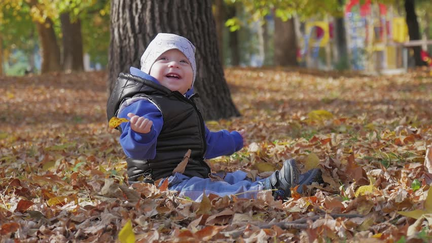 Little baby boy sitting on grass and fallen leaves in park on bright and sunny early autumn day looking at yellow leaf in hand and smiling. Happy baby boy throws autumn leaves and laughs outdoors. | Shutterstock HD Video #1018647583