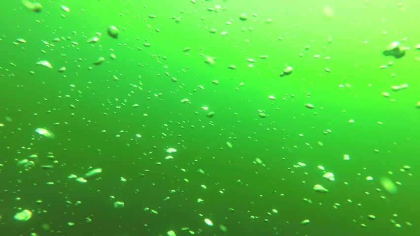 Bubbles of air rise to the surface of the sea. | Shutterstock HD Video #1018690291
