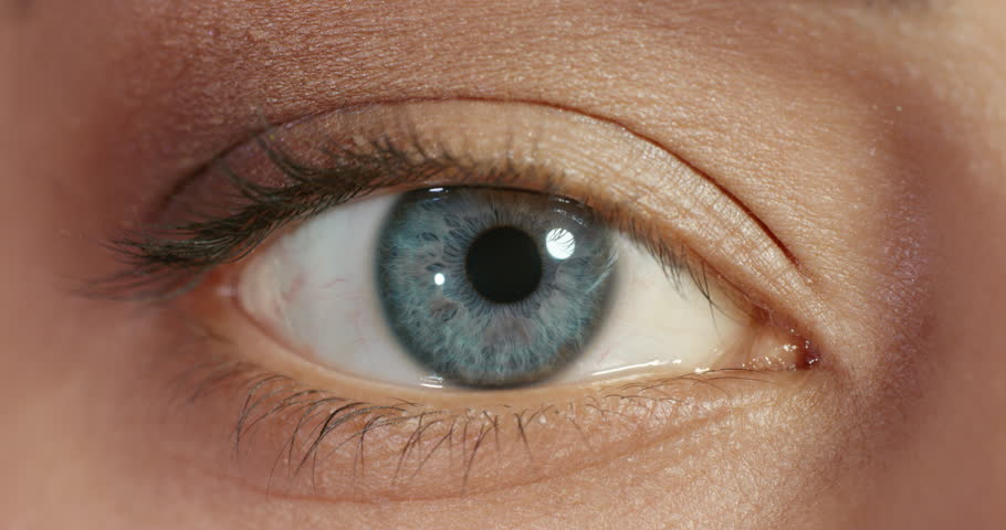Close up macro blue eye opening beautiful iris natural human beauty healthy eyesight concept | Shutterstock HD Video #1018690918