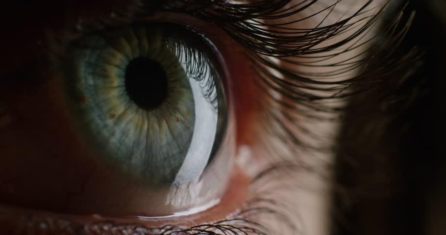 Close up human eye blinking beautiful iris looking curious healthy eyesight concept   Shutterstock HD Video #1018691536
