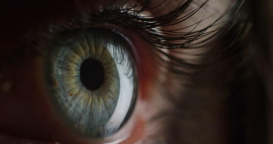 Macro beauty human eye light revealing iris contracting close up   Shutterstock HD Video #1018691542