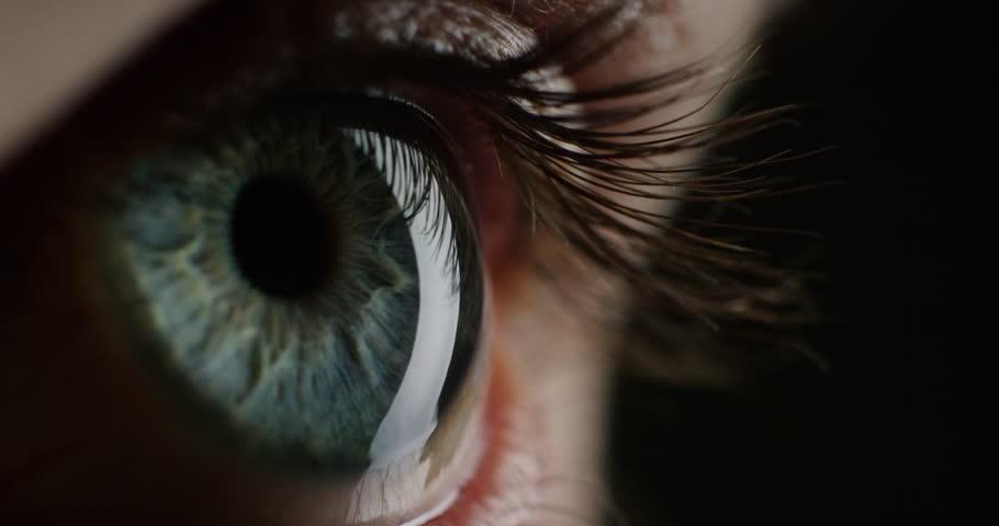 Macro beauty human eye light revealing iris contracting close up   Shutterstock HD Video #1018691605