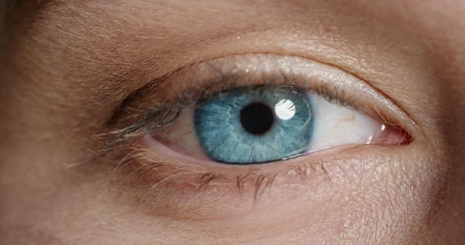Beautiful macro eye opening blinking close up | Shutterstock HD Video #1018746841