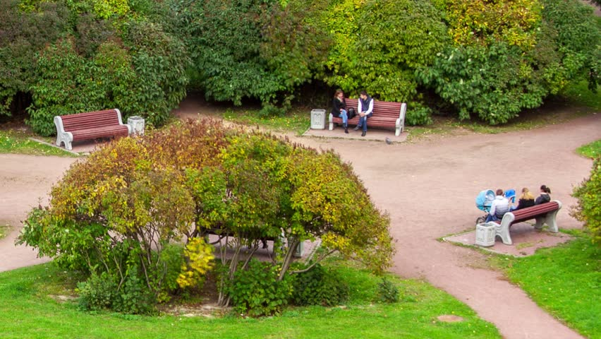 One year in seconds. Seasonal change in park. Shot in Saint-Petersburg. Timelapse.