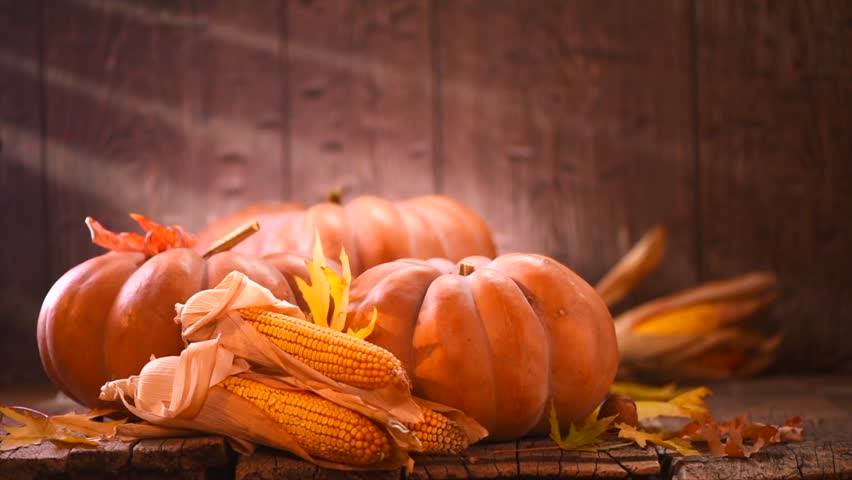 Thanksgiving Day. Pumpkin, Squash. Happy Thanksgiving Day wooden Table Background decorated with pumpkins, corn comb, candles and autumn leaves garland. Holiday Autumn festival scene, Fall, Harvest 4K | Shutterstock HD Video #1019095252