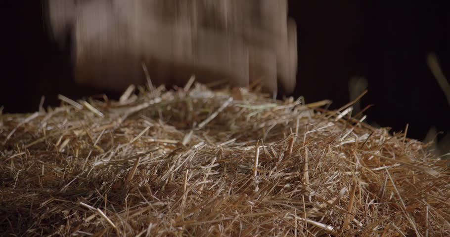 Gloves throwing on a dry hay pile / Slow motion 5   Shutterstock HD Video #1019161201