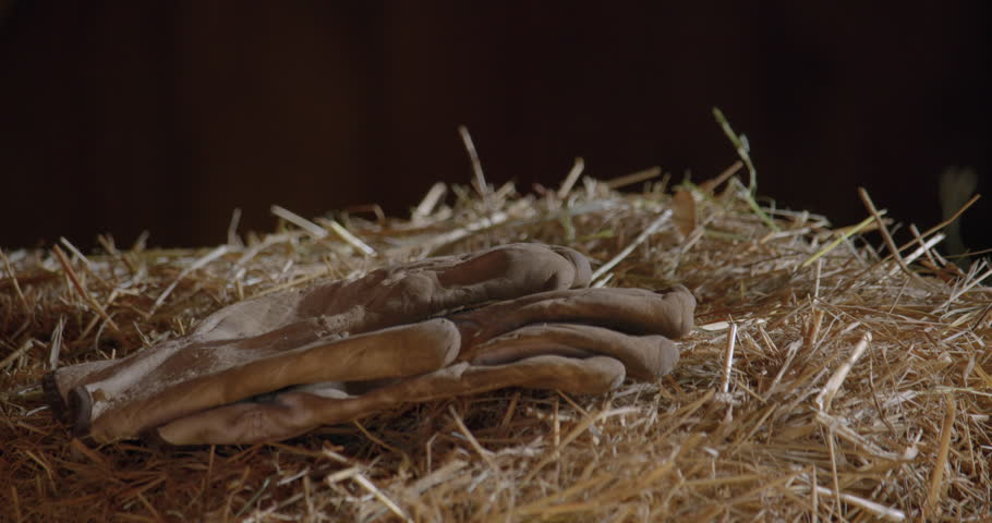 Gloves on a dry hay pile / Panning right 1   Shutterstock HD Video #1019161216