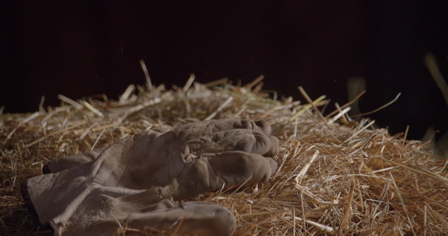 Gloves throwing on a dry hay pile / Slow motion 1   Shutterstock HD Video #1019161222