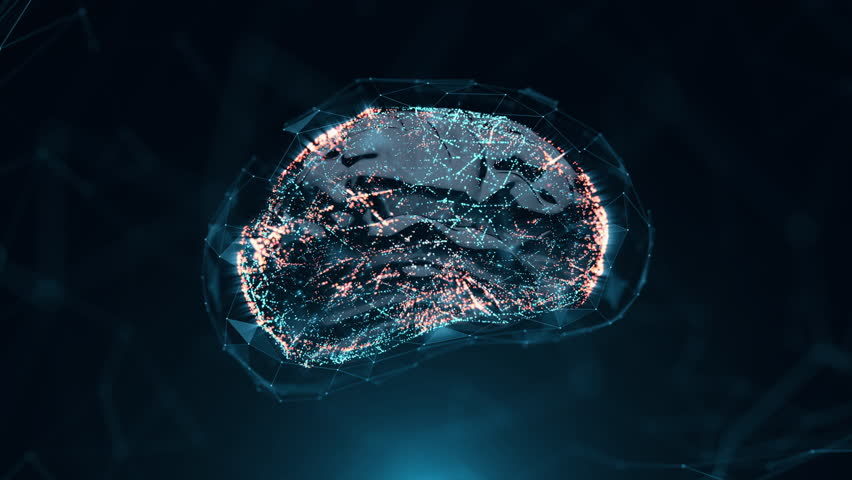 Ai, Silicon Synthetic Brain 4K Steady Blue   Shutterstock HD Video #1019393485