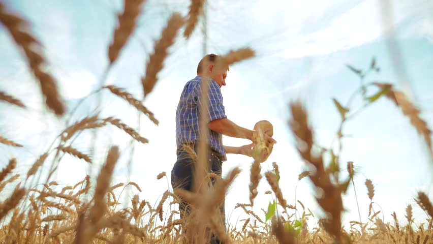 Old farmer man baker silhouette holds a golden bread and loaf in ripe wheat field against the blue sky. slow motion video. harvest time. old man sunlight baker bread baking vintage lifestyle | Shutterstock HD Video #1019465764
