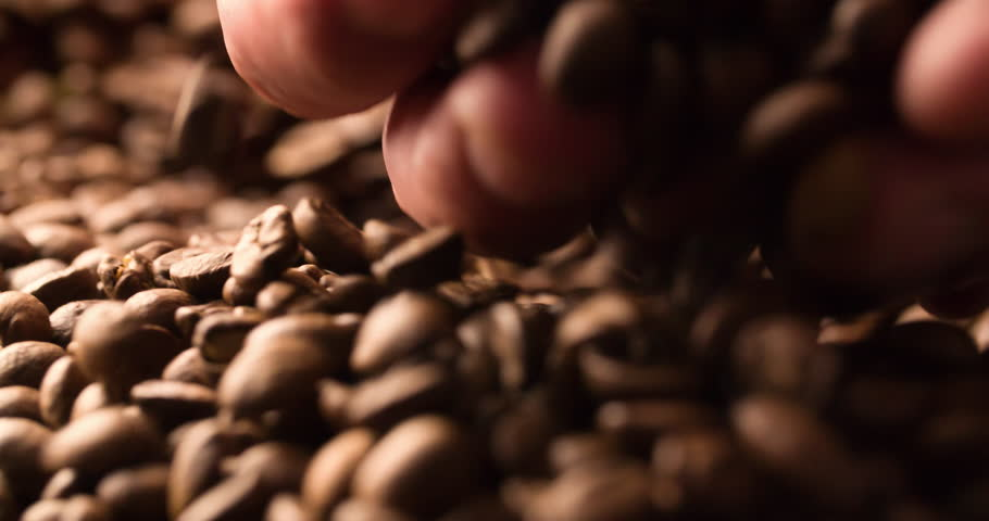 Hand takes handful of scattered Coffee beans Slow Motion extremely close up Macro shot 4K video | Shutterstock HD Video #1019535106