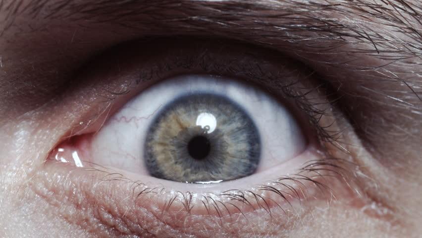 Grey eye opening and closing looking at camera. Macro.   Shutterstock HD Video #1019717764