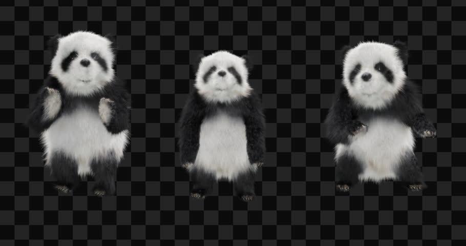 Panda  CG fur 3d rendering animal realistic CGI VFX Animation  Loop alpha dance Silly Dancing Jumping Cross Jumps animals   Shutterstock HD Video #1019924869