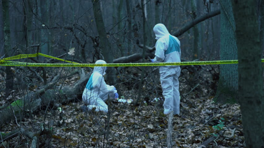 Two forensic experts in protective gear working at crime scene in forest. Crime scene investigation in progress