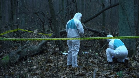 Two Forensic Analysts Working At Stock Footage Video 100 Royalty Free 1019939392 Shutterstock