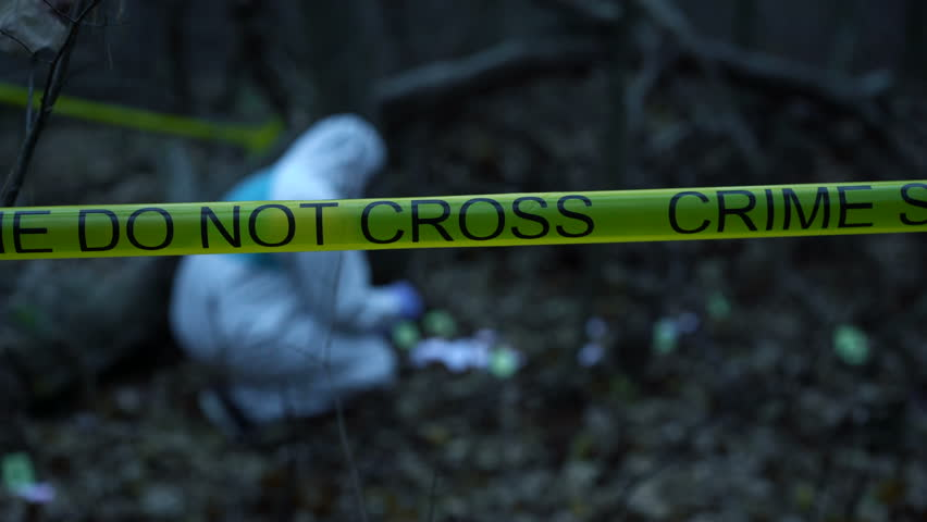 Yellow crime scene tape in forest, forensic expert collecting evidence at site. Crime scene investigation in progress