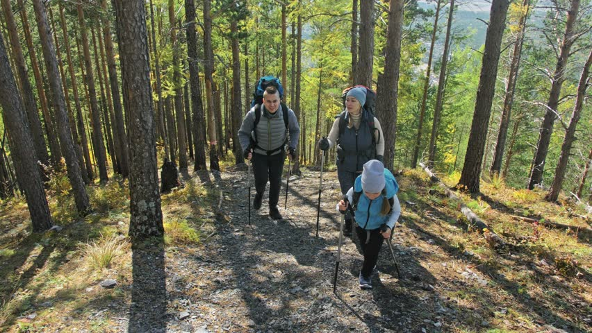 Family travels. People environment by mountains, rivers, streams. Parents and kids walk using trekking poles. Man and woman have professional hiking backpacks, flasks, mugs and other equipment. Dad | Shutterstock HD Video #1019973343