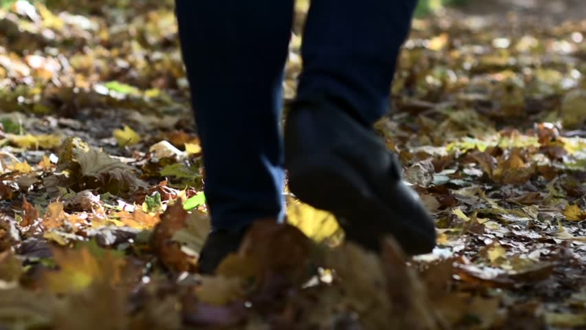 Walking on a golden carpet of fallen leaves in an autumn park close-up | Shutterstock HD Video #1019976883