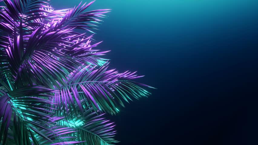 Tropical palm tree at night. Neon light.    Shutterstock HD Video #1020062536
