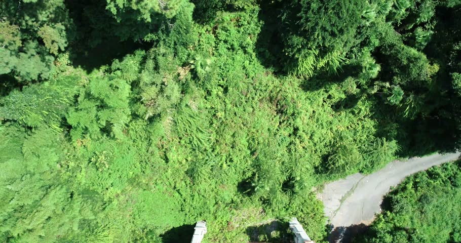 Ancient graph ruins Aerial. Abkhazia. old house. | Shutterstock HD Video #1020211000