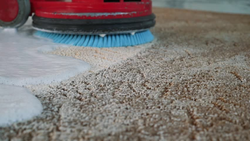 Professional carpet cleaning. Man cleans dirty carpet. Cleans the foam after cleaning. Carpet Cleaning With Electric Scrubber Royalty-Free Stock Footage #1020258328