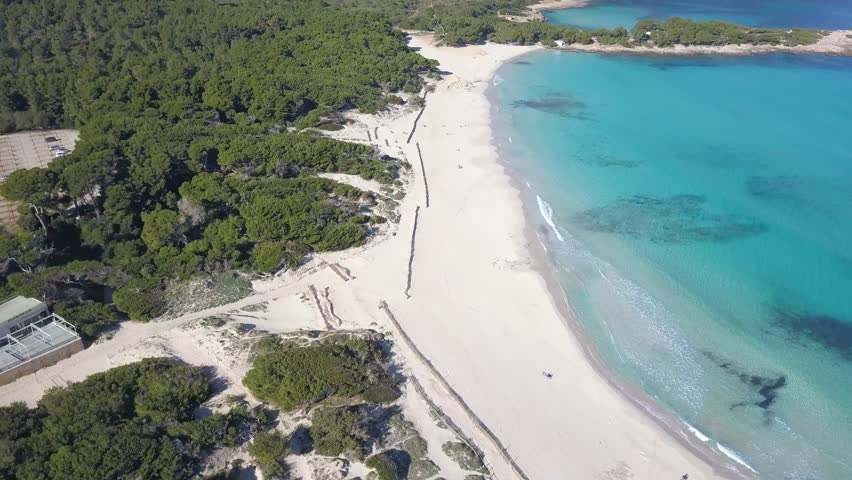 Drone flying over large forest and slowly revealing the beautiful empty beach of Calla Agulla, Mallorca. A Very popular European travel destination located in the Spanish Balearic Islands.
