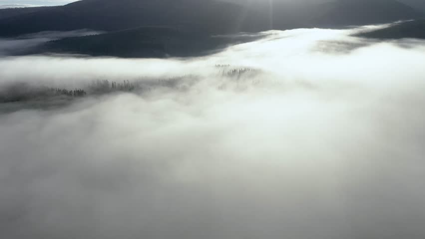 Flying above clouds. Aerial drone 4k movie of sunrise, misty morning and forest in the mountains | Shutterstock HD Video #1020441838