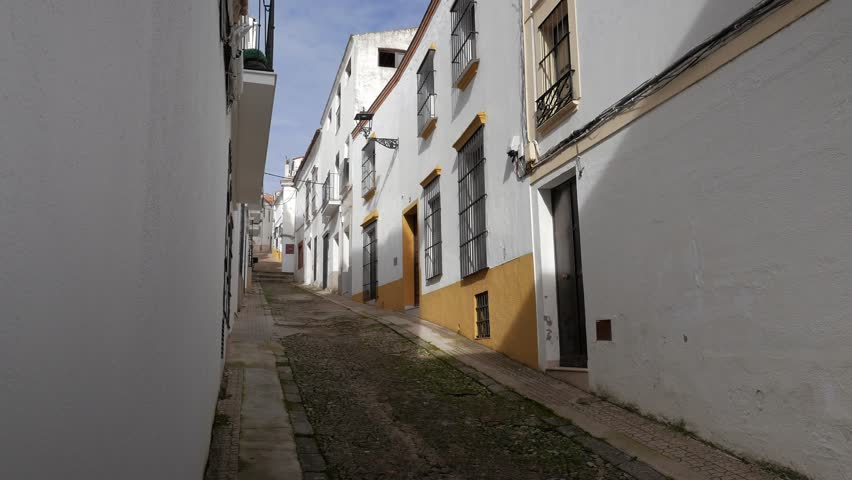 JEREZ DE LOS CABALLEROS, BADAJOZ, SPAIN - NOVEMBER 24, 2018: alleys of whitewashed houses typical of the village of Jerez de los Caballero, in the province of Badajoz #1020511861