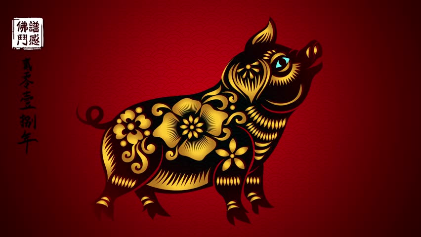 Happy Chinese New Year 2019 year of the pig,motion graphic, Zodiac Chinese characters | Shutterstock HD Video #1020691681