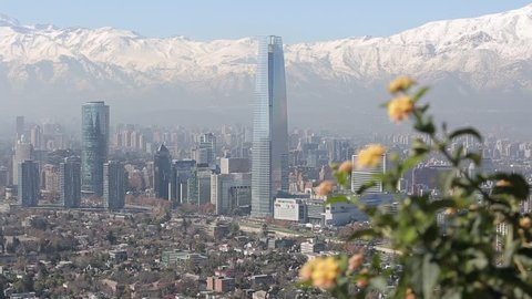 And aerial view of the city of Santiago, Chile. The camera pans to the right behind a cluster of wild flowers.
