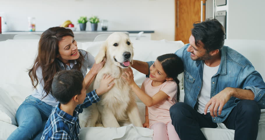 Portrait of happy family with a dog having fun together in living room in slow motion. Shot with RED camera in 8K. Concept of happy family, | Shutterstock HD Video #1020812284